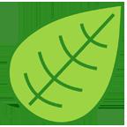 simple_leaf_xxhdpi